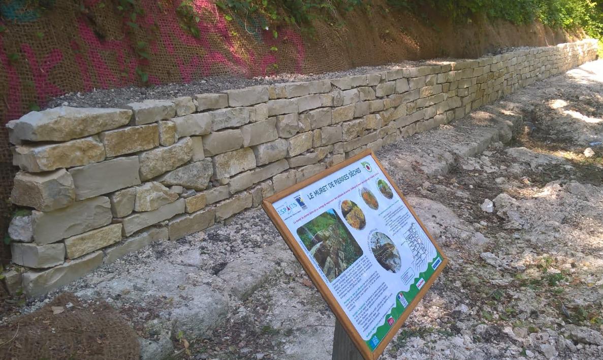 Muret-de-pierres-sèches-à-Périchaux