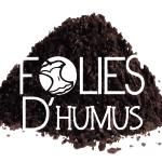 Logo_folieS