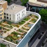 Jardin Beaugrenelle1