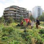 Jardin Hérold2