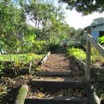Jardin des coteaux1