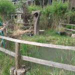 Jardins forestois 2014-2