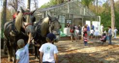 Nettoyons la nature le 25 septembre au Domaine national de Saint-Cloud