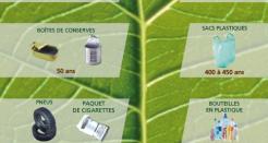Forêt propre, samedi 25 mars : rejoignez les équipes d'Espaces à Clamart et Meudon